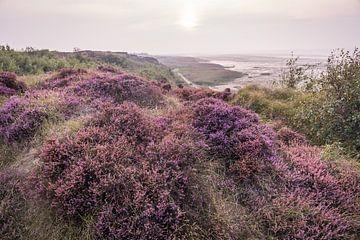 Heidelandschap bij Morsum Cliff, Sylt van Christian Müringer