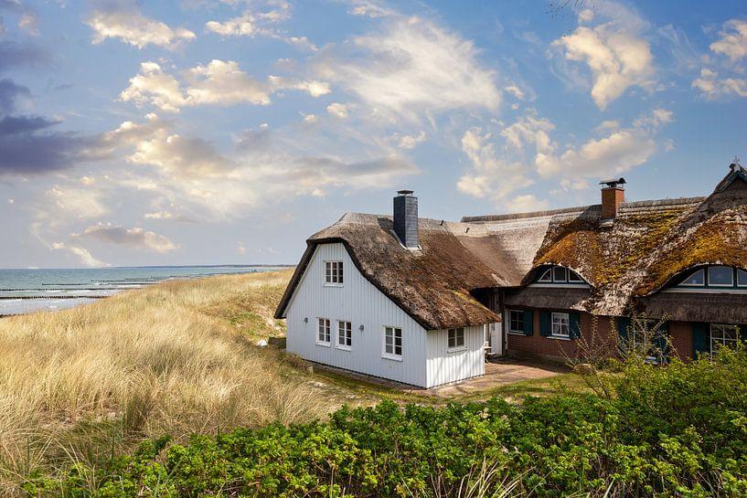 Maison de roseaux dans les dunes sur Tilo Grellmann   Photography