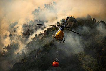 Incendie de forêt, Italie - 04 sur Jorn Wilms