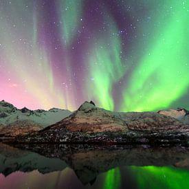 Nordlichter, Polarlicht oder Aurora Borealis im nächtlichen Himmel über den Lofoten Inseln in Nord-N von Sjoerd van der Wal Fotografie