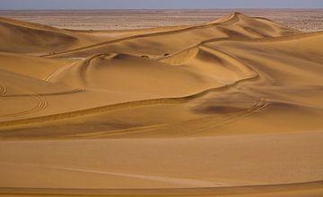 Duinenlandschap in de Namib woestijn, Namibië van Christel Nouwens- Lambers