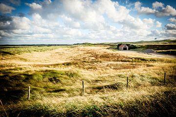 Ferienhaus in den niederländischen Dünen | Reisefotografie von Diana van Neck Photography