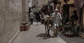 Donkeyman van BL Photography