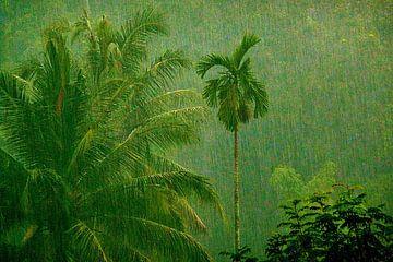Tropische regenbui van Lex Boon