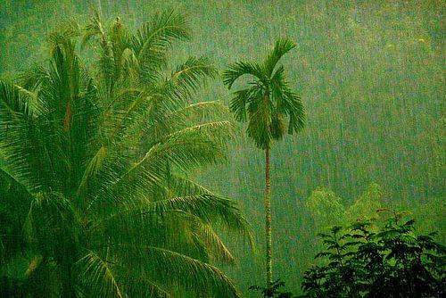 Tropische regenbui van