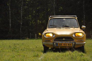 Citroën Ami von Theo Joosten