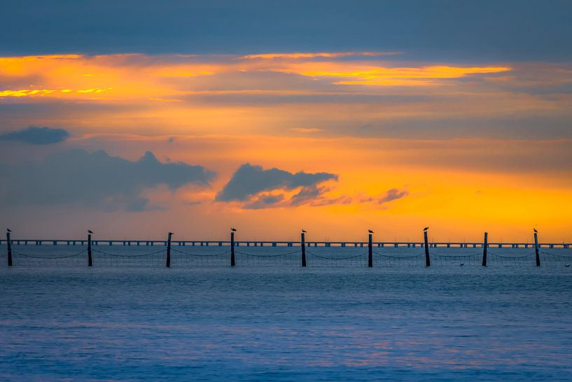 Chesapeake Sunset  van juvani photo