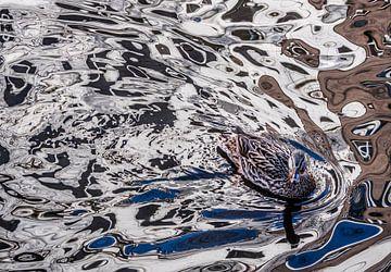 Eend creëert eigen schilderij van Boudewijn Swanenburg