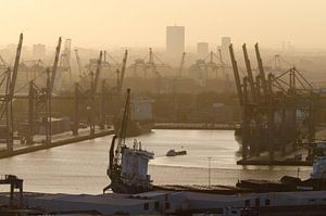 Merwehaven, Rotterdam