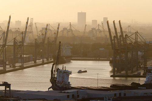 Merwehaven, Rotterdam van