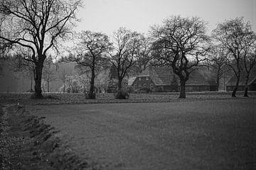 Bauernhof in der Achterhoek von Jan Nuboer