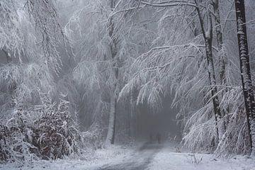 Sanfter Winterzauber von Inge Bovens