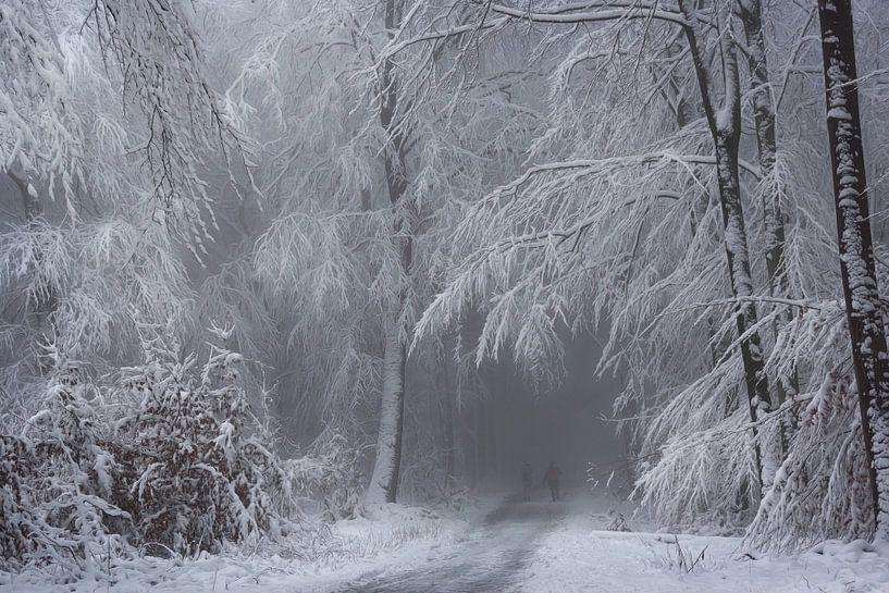 Soft Winter Magic. van Inge Bovens