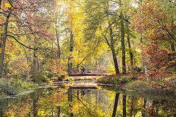 Herbstliche Farbreflexion, die kleine Brücke im Park Zeist von Peter Haastrecht, van