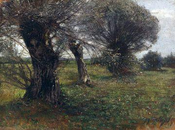 Weiden im Moos, HEINRICH VON ZÜGEL, um 1885 von Atelier Liesjes