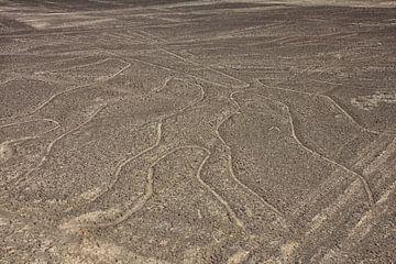 Nazca lijnen in Peru van Yvonne Smits