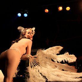 Burleske sexy topless vrouw als pinup met veren van Atelier Liesjes