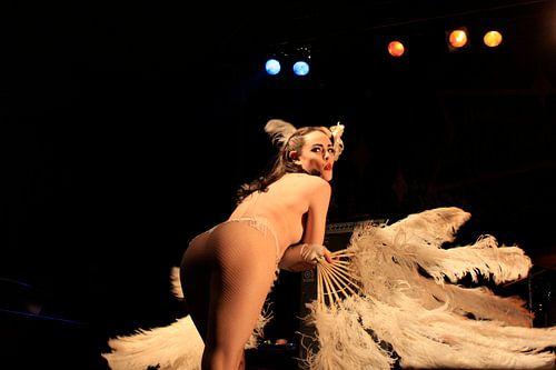 Burleske sexy topless vrouw als pinup met veren