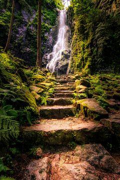 Cascade de Burgbach en Forêt-Noire sur Fotos by Jan Wehnert