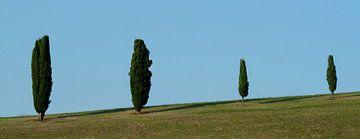 minimaal landschap van Pieter Veninga