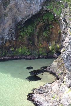 Höhle von Simone van der Heide
