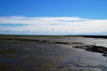 Loix, drooggevallen zee van Maurits Bredius