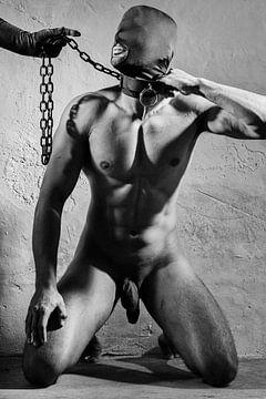 Hele mooie naakte man gefotografeerd in een bdsm dungeon setting. #E0062 van william langeveld