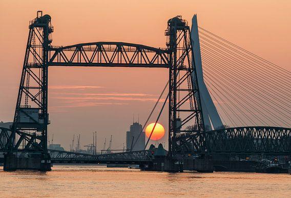 Zonsondergang bij de Hef in Rotterdam