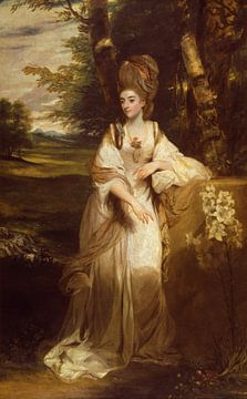 Porträt von Lady Bampfylde, Joshua Reynolds von Meesterlijcke Meesters
