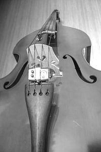 Contrabas - Double bass van