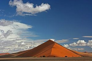 Dune 45 Namibia van Manuel Schulz