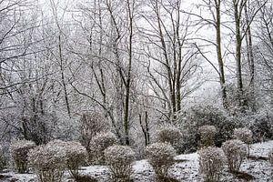 winter wonderland von Dennis Klaassen