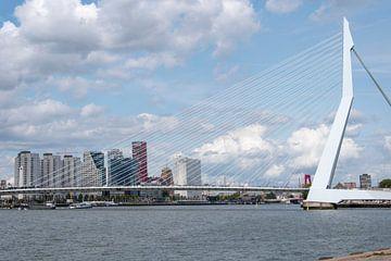 Die Erasmusbrücke von Anouk IJpelaar