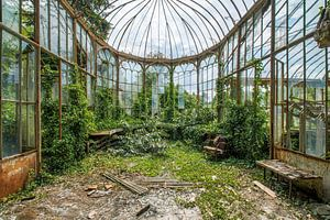 Verlassener Gartenraum in Belgien