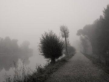 Stille plaats van Lena Weisbek