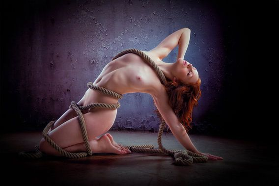 Holly in rope