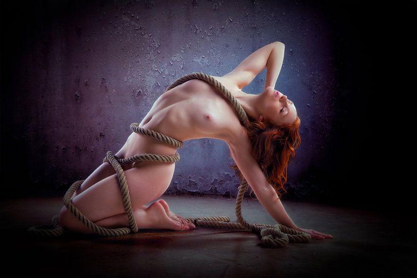 Holly in rope von Allard Kamermans