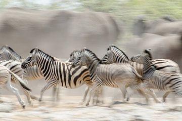 Onrust bij de drinkplaats, Zebra's en Olifanten van Jeroen Kleverwal