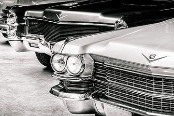 Die Oldtimer-Cadillacs von Martin Bergsma