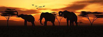 Elefanten van Klaus-Dieter Schulze