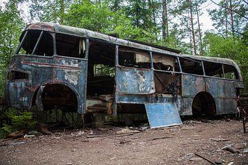 Verrosteter Bus in Schweden von Leontien Adriaanse