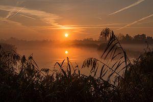 Gouden zonsopgang in de uiterwaard van de Lek bij Culemborg