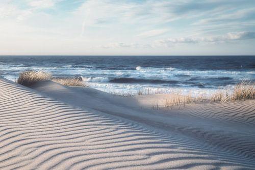 Winterse duinen aan de Belgische kust