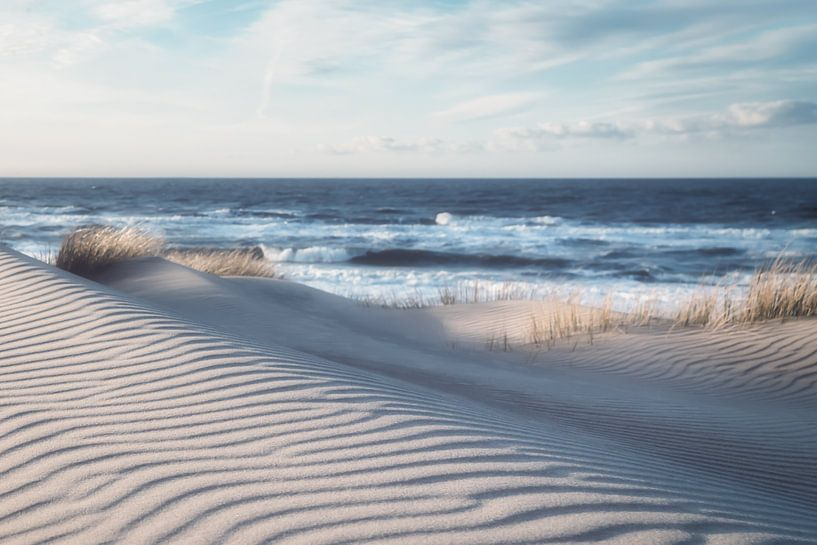 Winterdünen an der belgischen Küste von Rik Verslype