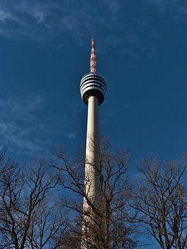 Der berühmte Fernsehturm von Stuttgart vor kahlen Bäumen im Winter von Timon Schneider
