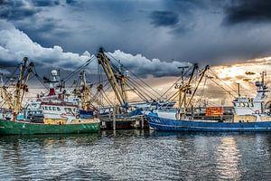Vissersboten in de haven van Harlingen en in het avondlicht
