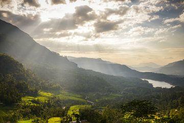 Stralend Sri Lanka van Jille Zuidema