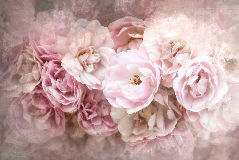 Rosenzeit von Claudia Moeckel