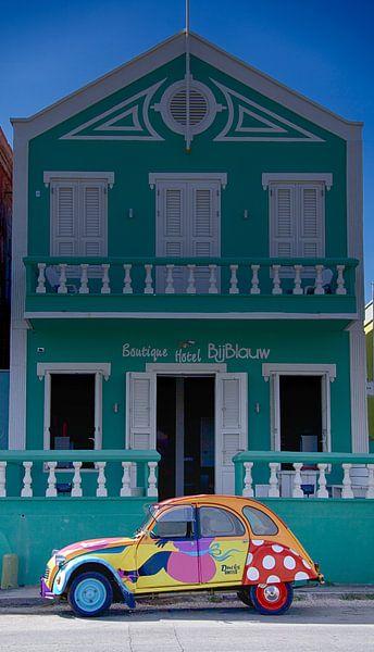 Eend bij Blauw in Kleur van SeruRon Photo's