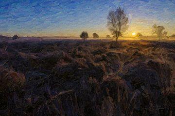 heidelandschap in ochtendlicht van André Roodhuizen